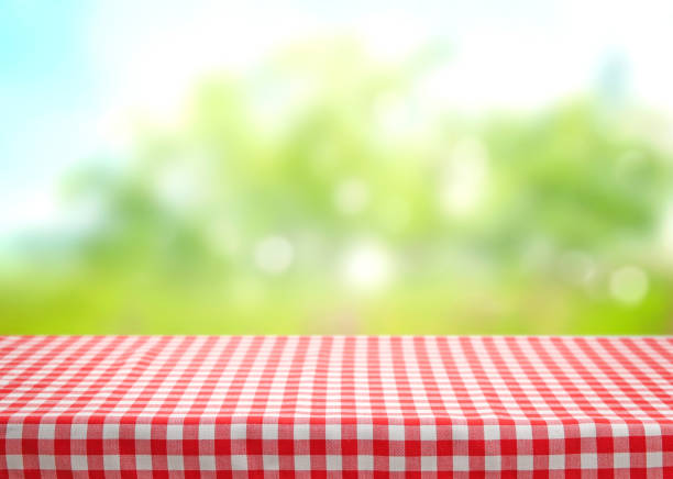 checkered picnic red table cloth table on natural background. - picnic foto e immagini stock