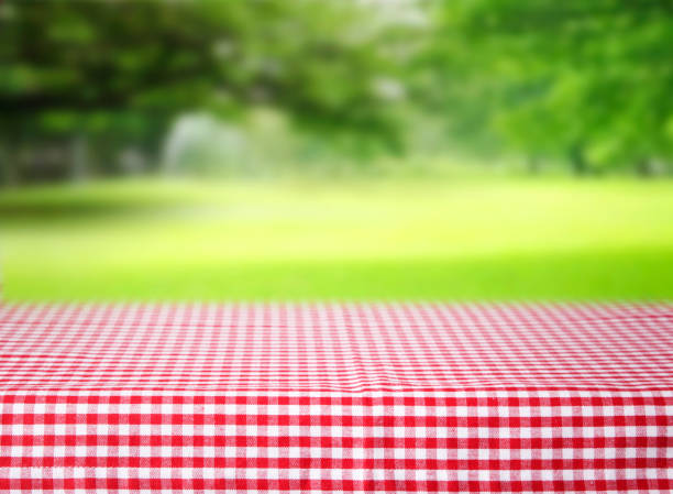 checkered red tablecloth emty space table green background. - picnic foto e immagini stock