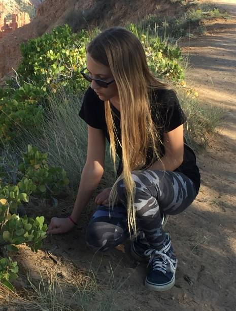 Checking out plants at Bryce Canyon stock photo