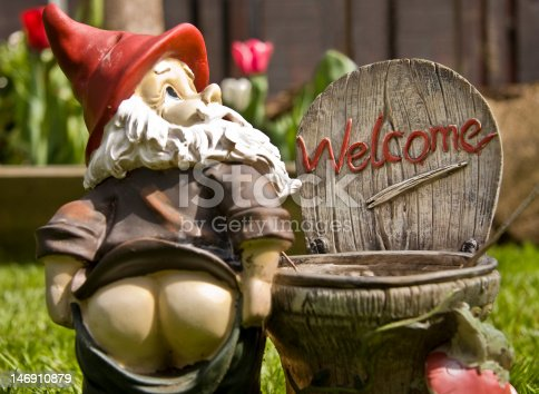 This cheeky garden gnome has his bottom exposed whilst pulling up his pants. The welcome sign is in focus and a row of tulips can be seen in the background.