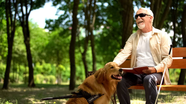 Cheerful blind man holding book and stroking assistance dog, enjoying life stock photo