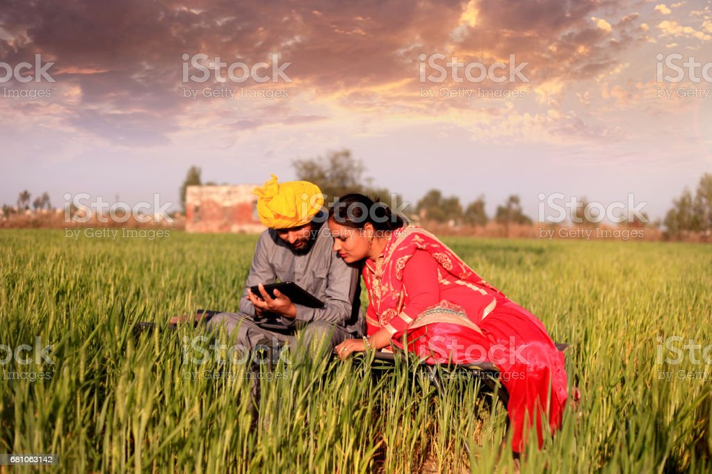 Cheerful couple using ipad in the nature stock photo