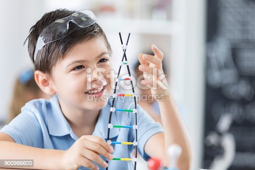 istock Cheerful elementary student looks at DNA helix model 900966620