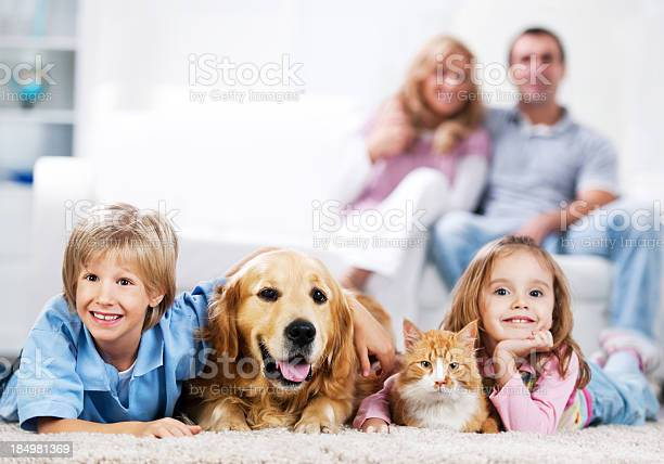 Cheerful family and their domestic animals at home picture id184981369?b=1&k=6&m=184981369&s=612x612&h=dxwmorcrmwdzkubxisy0q3pxwwqzh6anjvuhlwmcnk8=