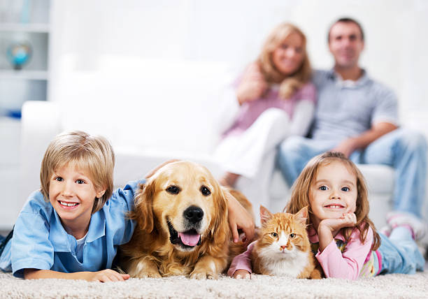 Cheerful family and their domestic animals at home picture id184981369?b=1&k=6&m=184981369&s=612x612&w=0&h=xg6w5r6hfgzf5vb2mh0sfzkr0i3l7bxergivbhosuoa=