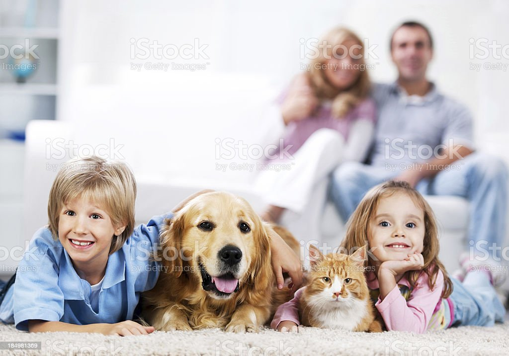 Cheerful family and their domestic animals at home. stock photo