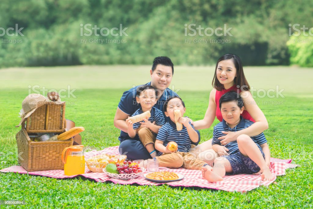 Cheerful family picnicking together in the park stock photo