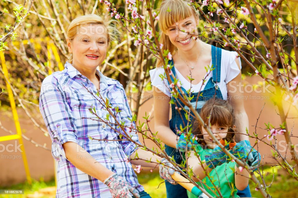 Cheerful Family Working in Orchard. royalty-free stock photo