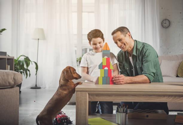 cheerful father and son having fun with dog at home - torre struttura edile foto e immagini stock