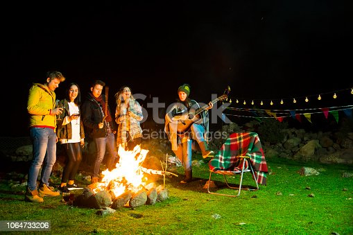 Cheerful friends having fun by the campfire during the autumn
