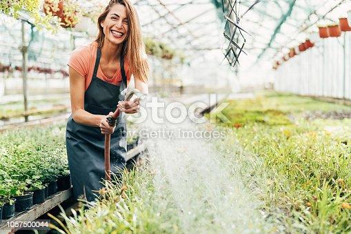Smiling gardener watering flowers with a sprinkler in the nursery