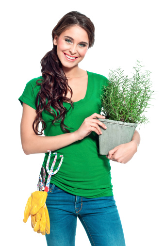 Cheerful Gardener With Herbs Stock Photo - Download Image Now