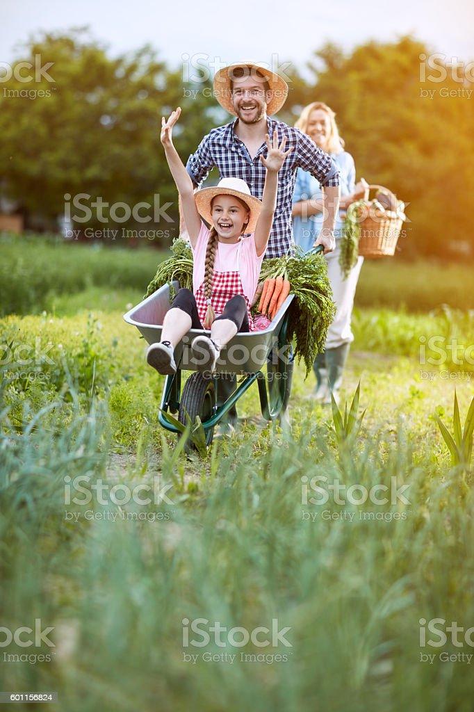 Cheerful girl in wheelbarrow – Foto
