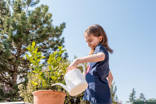 Cheerful Girl Watering Lemon Plant Growing in the Patio