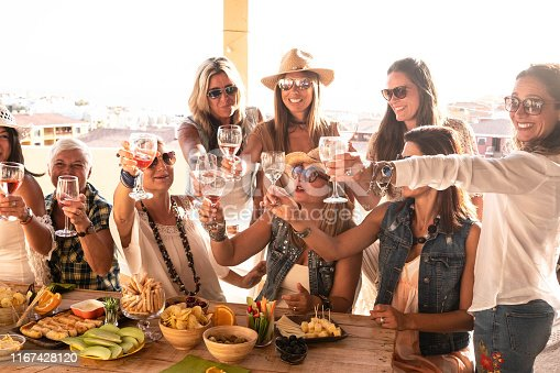 1016084100istockphoto Cheerful group of females celebrating holiday on the terrace field. Friends smiling and enjoying aperitif with food and drink. Clear sky on background 1167428120
