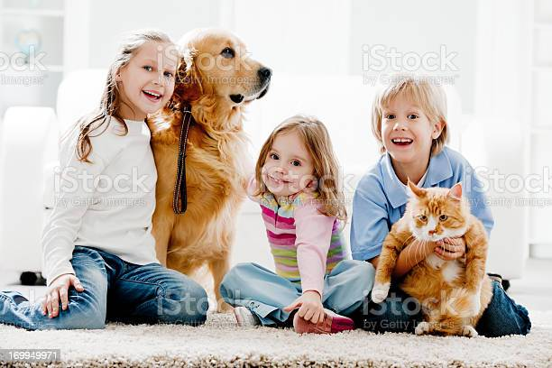 Cheerful kids and their domestic animals at home picture id169949971?b=1&k=6&m=169949971&s=612x612&h= dasjngwcjepqnkwgzniirxxdoljiwgjopipcoobuhi=