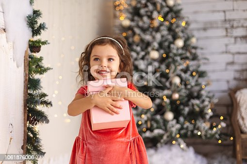 istock Cheerful little girl is hugging Christmas gift on Christmas tree 1061876006