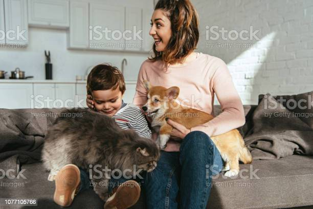 Cheerful mother and son sitting on sofa with cat and dog in living picture id1077105766?b=1&k=6&m=1077105766&s=612x612&h=3zi5eaz2pwhhsm4b lovd9vpcalglll0txsvs0cdgfk=