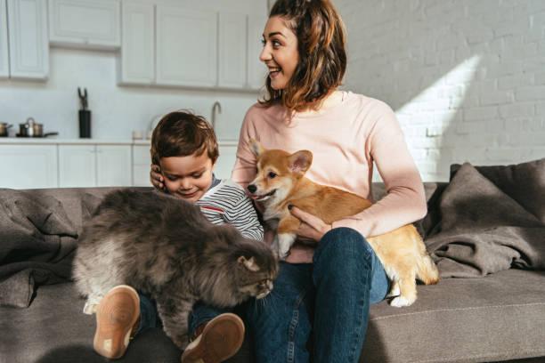 Cheerful mother and son sitting on sofa with cat and dog in living picture id1077105766?b=1&k=6&m=1077105766&s=612x612&w=0&h=sxncyhfuc2zga3reobhmvn459h9pr3jtgjesfn gbli=