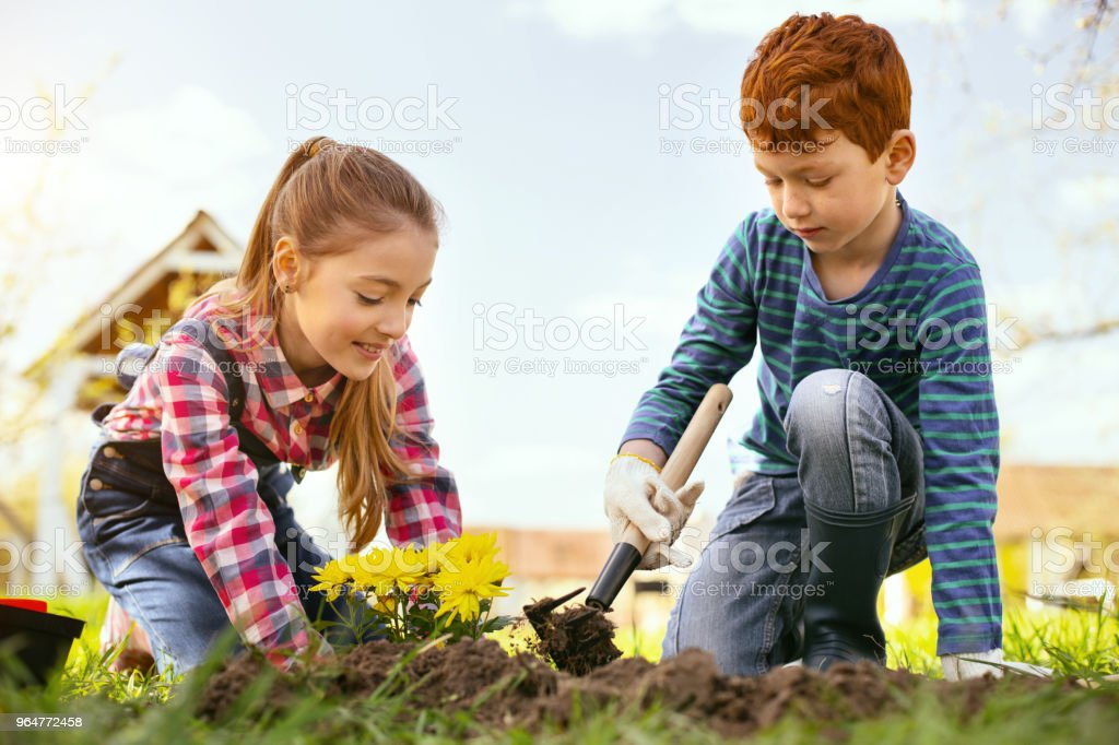 Cheerful positive girl planting flowers royalty-free stock photo