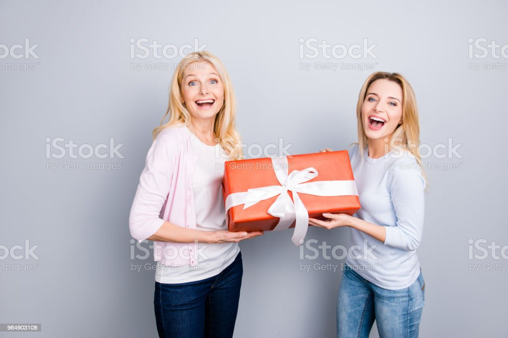 Cheerful positive wondered glad amazed mother and daughter enjoying holiday having big gift case in red package with white bow wearing casual outfits jeans isolated on grey background royalty-free stock photo