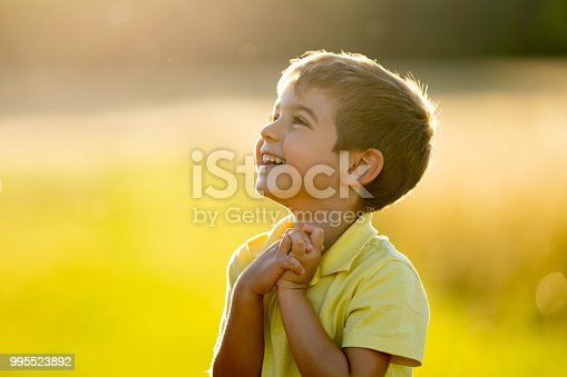 4 year old boy laughing full of joy looking excited and grateful with copyspace rural outdoor surrounding shallow depth of field  sunset summer vacation or weekend theme
