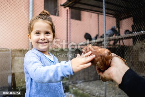 istock Cheerful toddler stroking a pigeon 1061466254