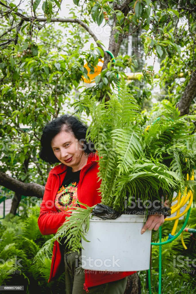 Cheerful woman gardener in a green spring garden royalty-free stock photo