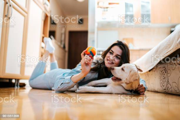Cheerful woman playing with her dog in apartment picture id951551358?b=1&k=6&m=951551358&s=612x612&h=k b8ze9xklouesueipzvsdrya6kkjzxqout3bslhjua=