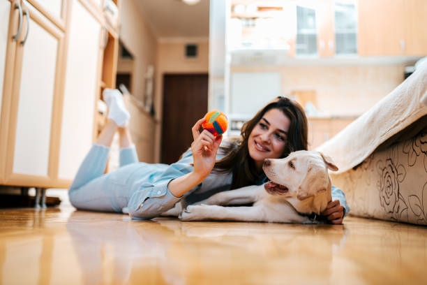 Woman on the floor playing with a dog. See you're dog's point of view to help with dog proofing your house.