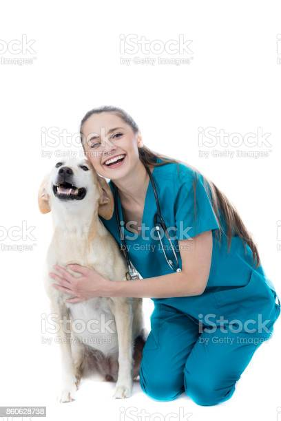 Cheerful young female veterinarian with large dog picture id860628738?b=1&k=6&m=860628738&s=612x612&h=ukrbek7dffknsex zjf0qtbhozuuf7fydwrzf4cjwus=