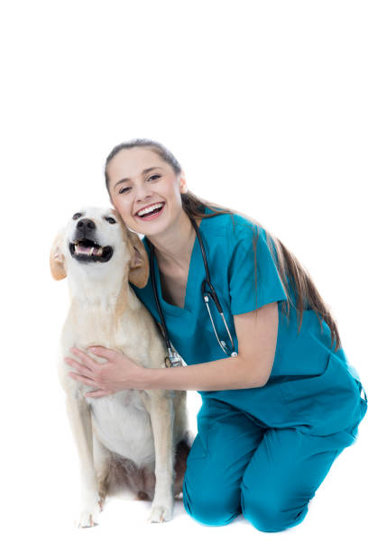 Cheerful young female veterinarian with large dog picture id860628738?b=1&k=6&m=860628738&s=612x612&w=0&h=wzysidkp8fnpfkvwtm2ieb98ckgsn1cv24ijgfdnwdm=