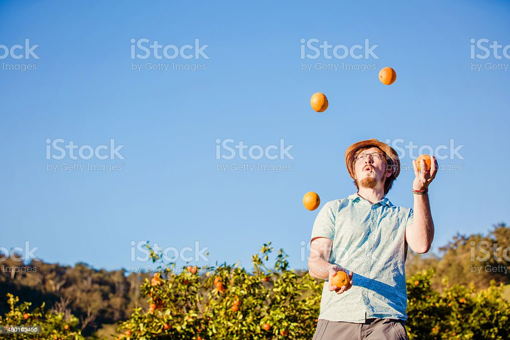 Cheerful young man juggling oranges on citrus farm stock photo