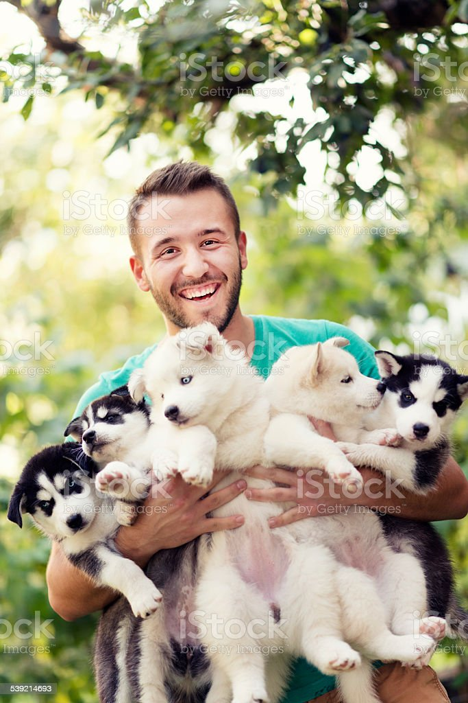 Cheerful Young Men Holding Five Lovely Husky Baby Puppies stock photo