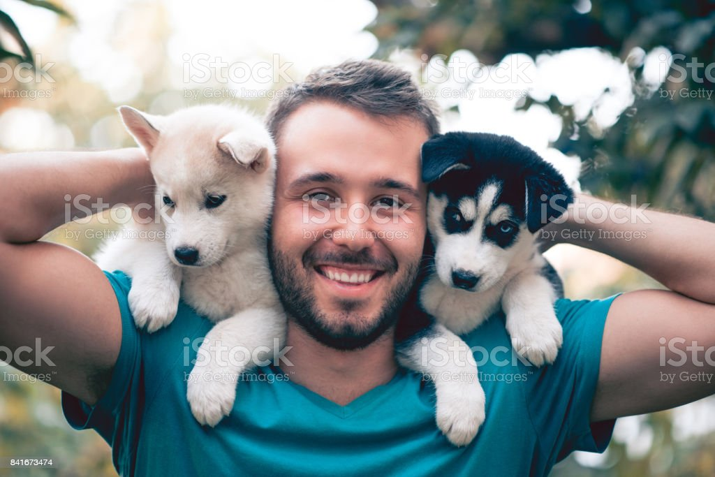 Cheerful Young Men Holding Two Lovely Husky Baby Puppies stock photo