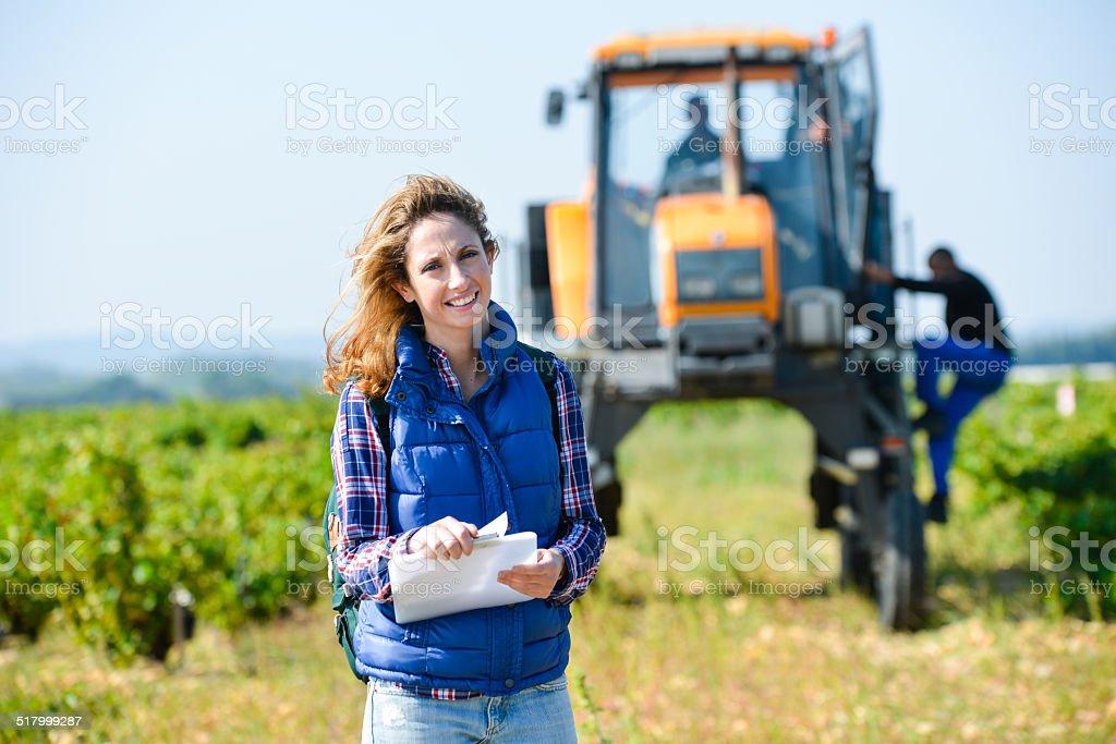 Gaie jeune femme oenologist de vérification pour la récolte vignoble de raisin - Photo