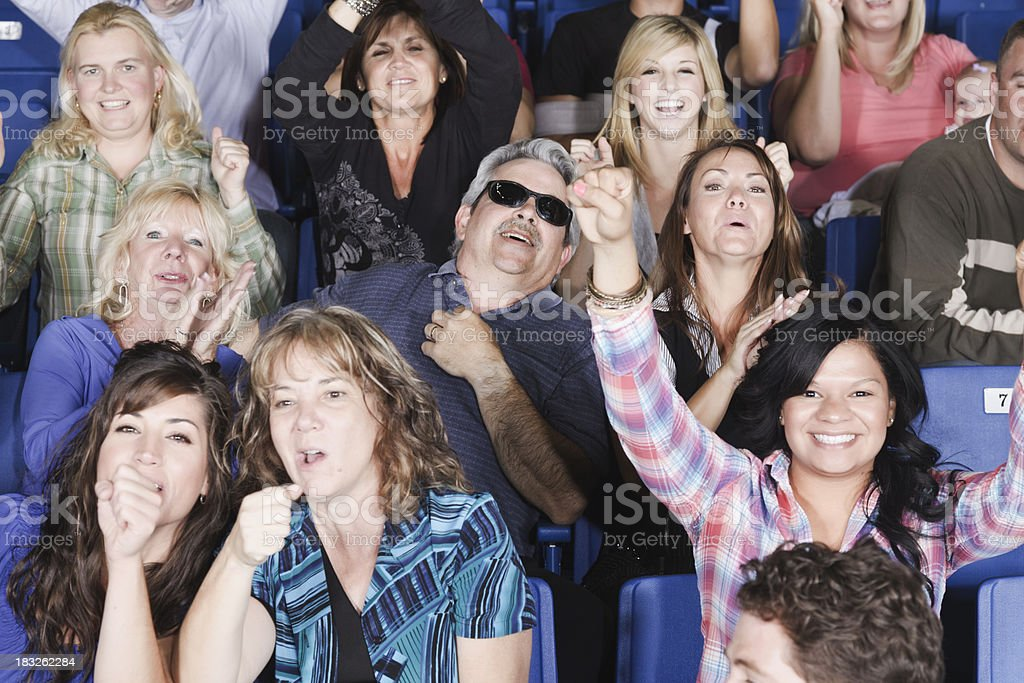 Cheering Crowd in a Stadium royalty-free stock photo