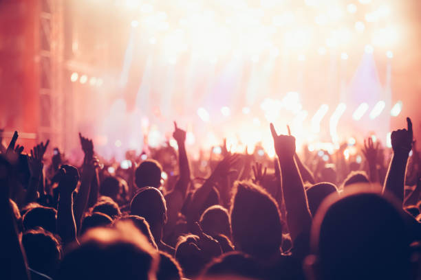 cheering crowd with hands in air at music festival - popular music concert stock photos and pictures