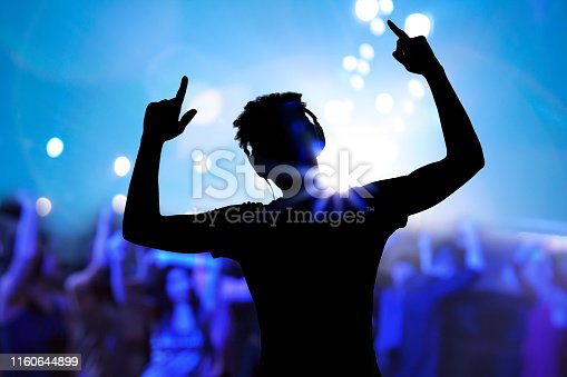 Cheering disco DJ performing with arm raised at concert music festival