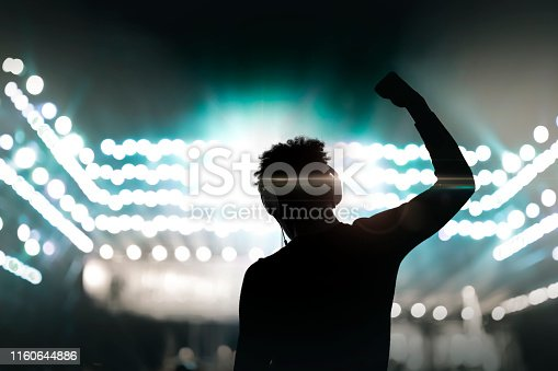 Cheering disco DJ with arm raised at concert music festival