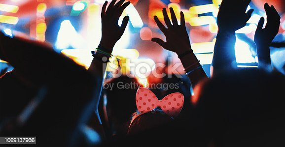 1069137774 istock photo Cheering fans at concert. 1069137936
