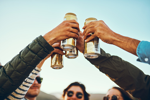 Low angle shot of a group of young friends cheersing with beers while enjoying their day out on the beach