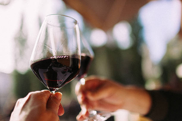 Cheers Couple cheering with glasses of red wine. red wine stock pictures, royalty-free photos & images