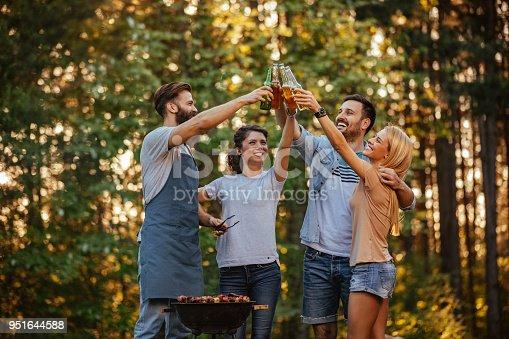 696841580 istock photo Cheers to friendship 951644588