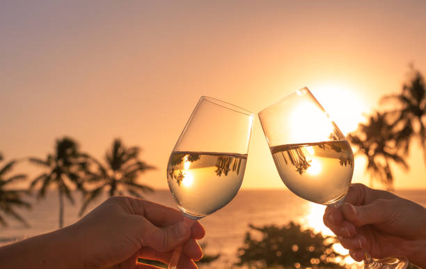 cheers with wine glasses in a beautiful sunset setting - affluent lifestyle stock pictures, royalty-free photos & images