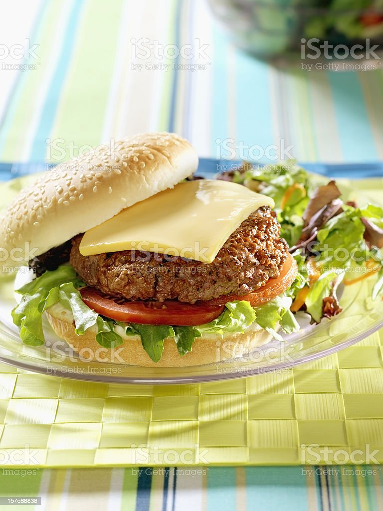 BBQ Cheese Burger with Spring Salad royalty-free stock photo