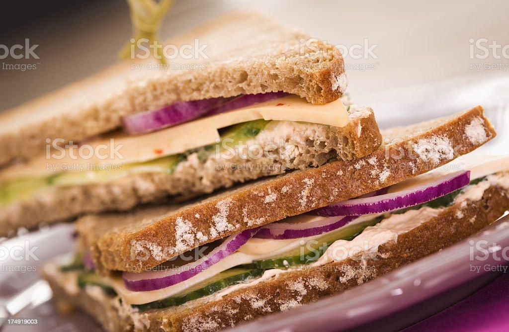 Cheese Club Sandwich royalty-free stock photo