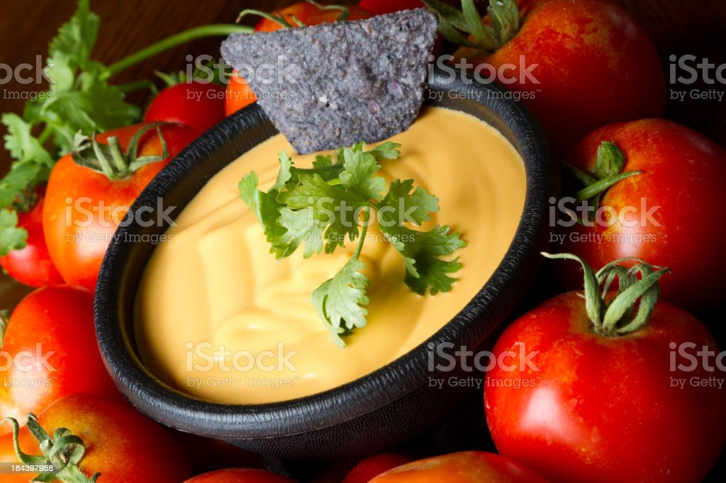 Cheese Dip royalty-free stock photo