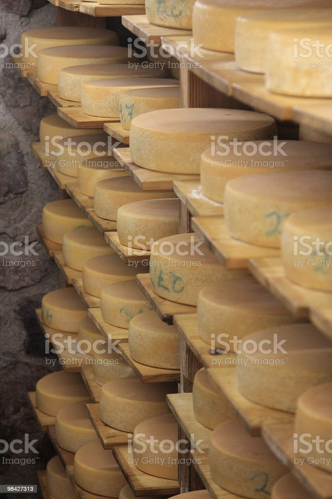Cheese factory royalty-free stock photo