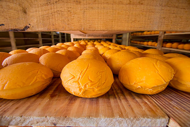 Cheese production process stock photo